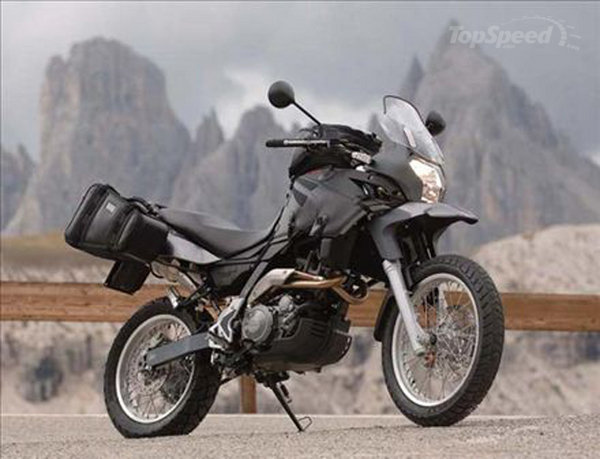 APRILIA PEGASO brown