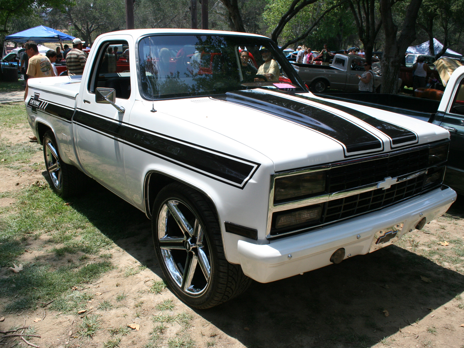 CHEVROLET CHEYENNE brown