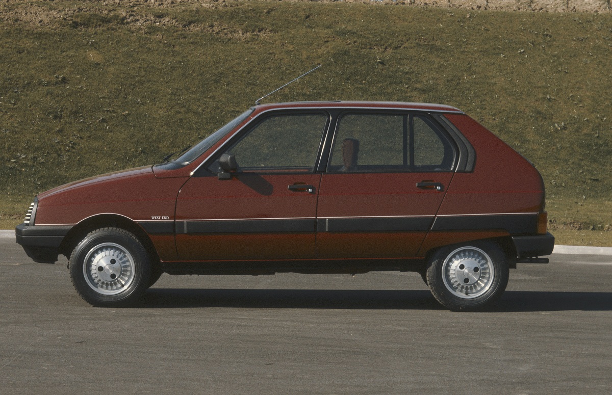 CITROEN VISA brown