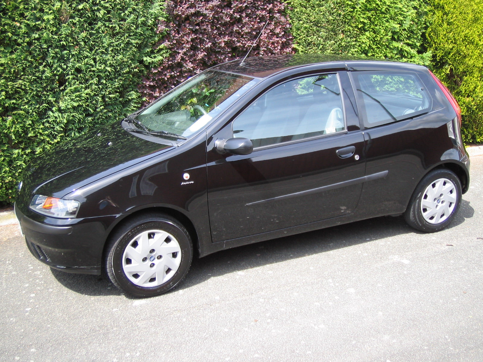 fiat punto - review and photos