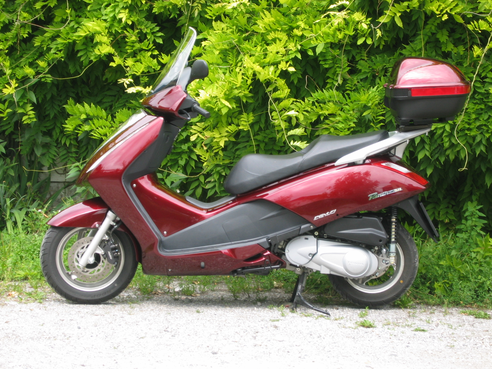 HONDA PANTHEON 125 brown