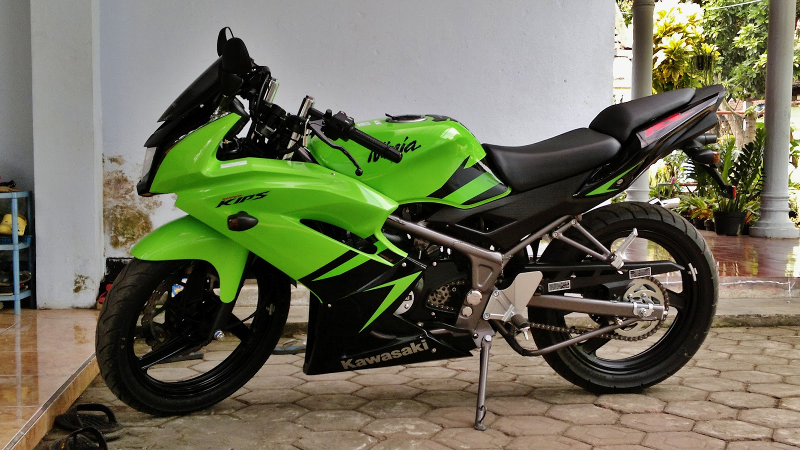 kawasaki ninja - review and photos