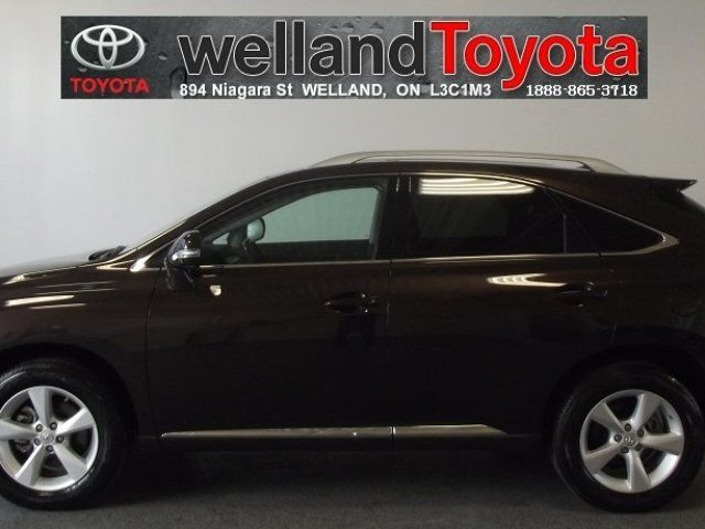 LEXUS RX brown