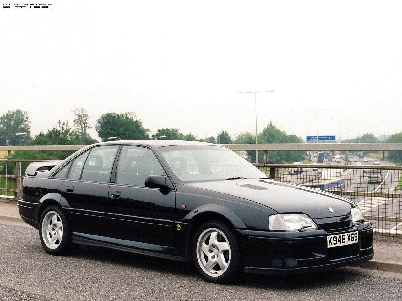 lotus wallpaper (Lotus Carlton)