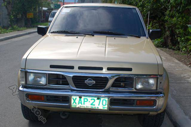 NISSAN TERRANO brown