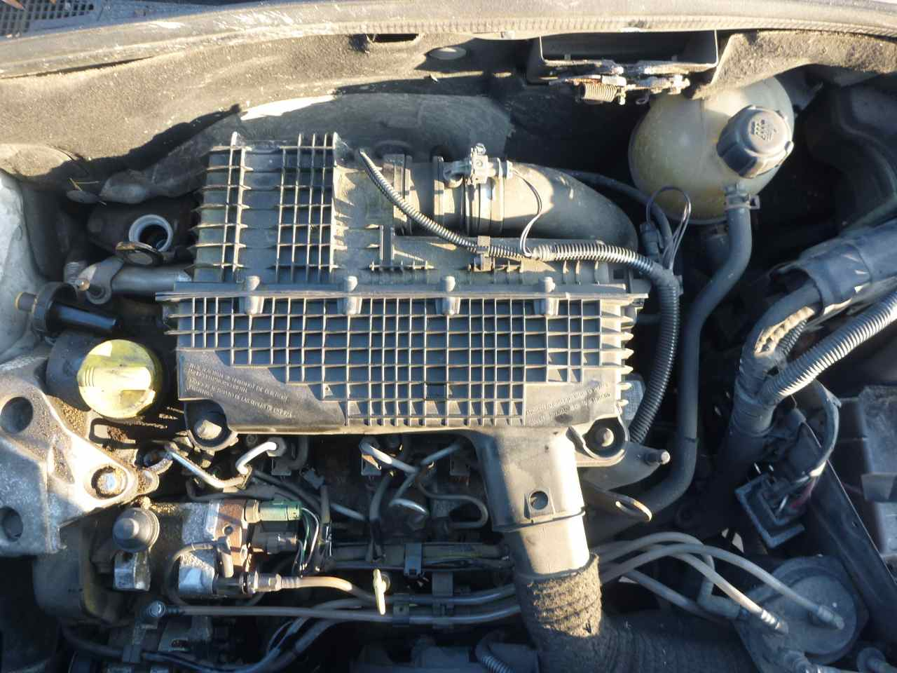 RENAULT KANGOO engine