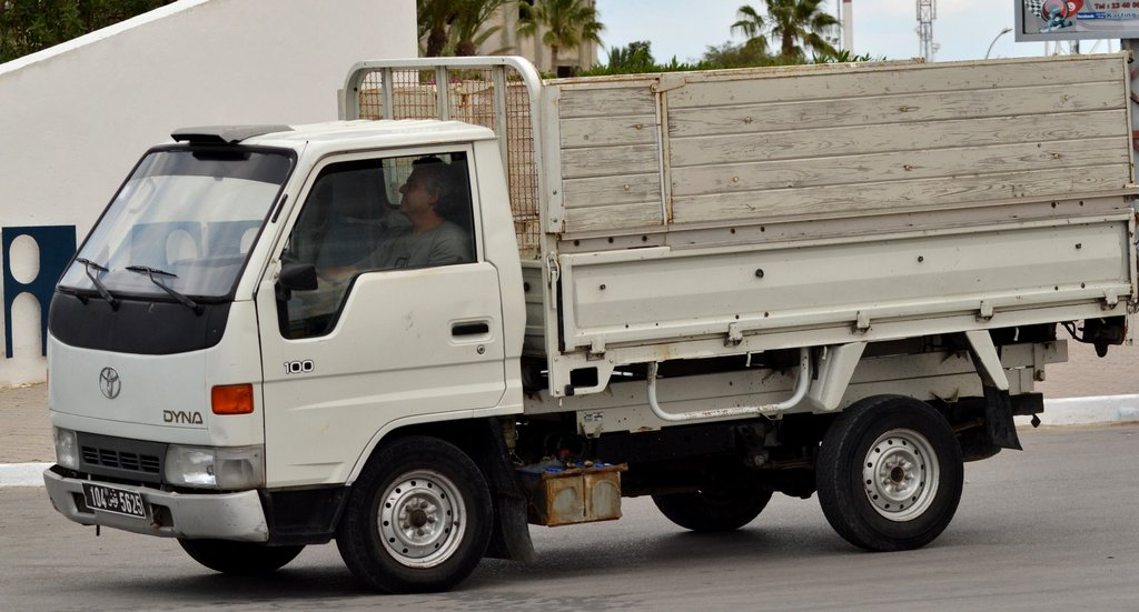 TOYOTA DYNA 100 red