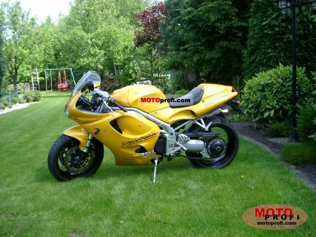 TRIUMPH DAYTONA T595 brown