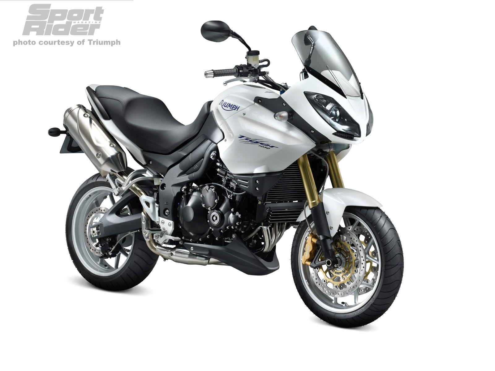 TRIUMPH TIGER 1050 white