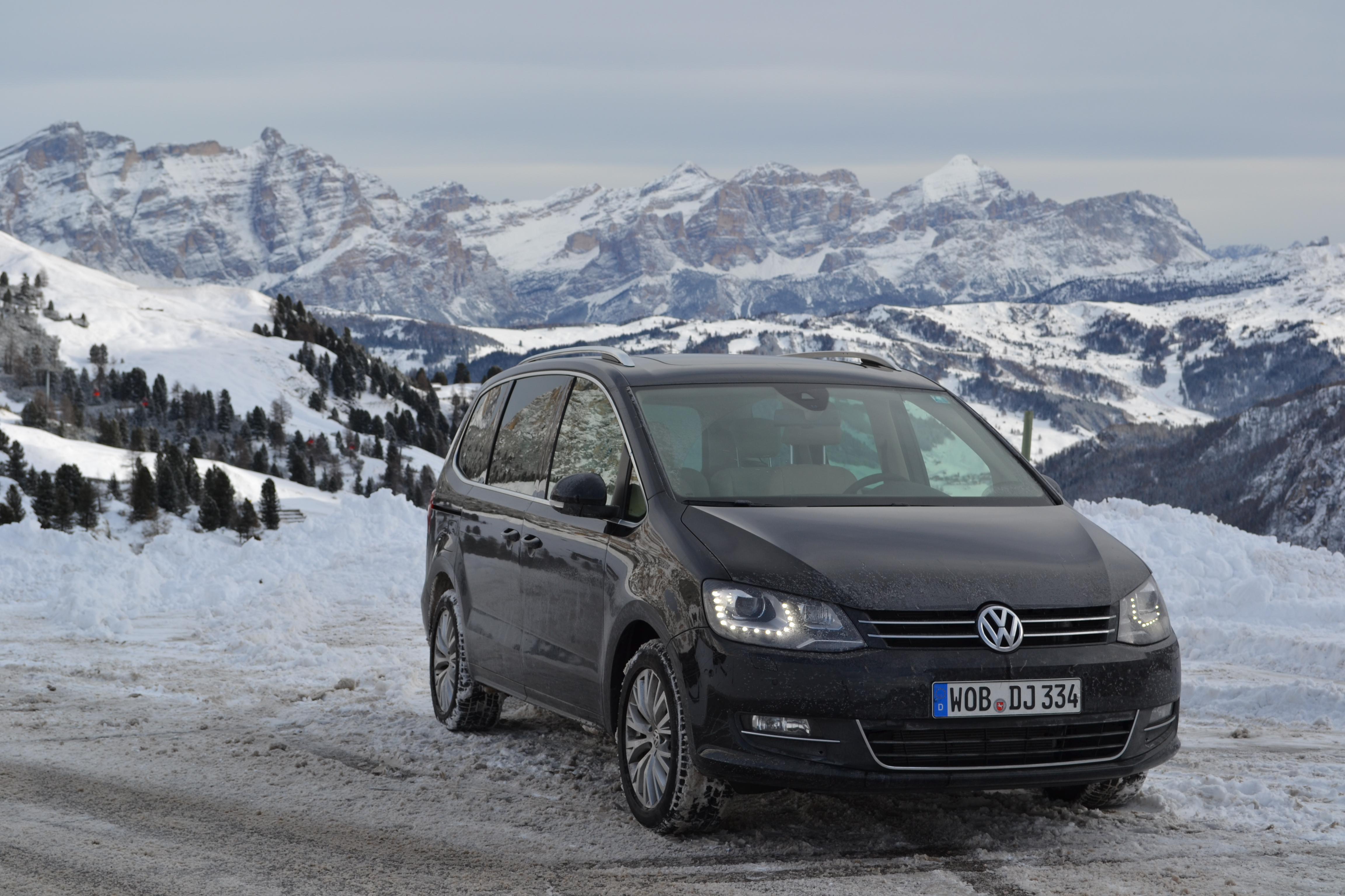 VOLKSWAGEN SHARAN brown
