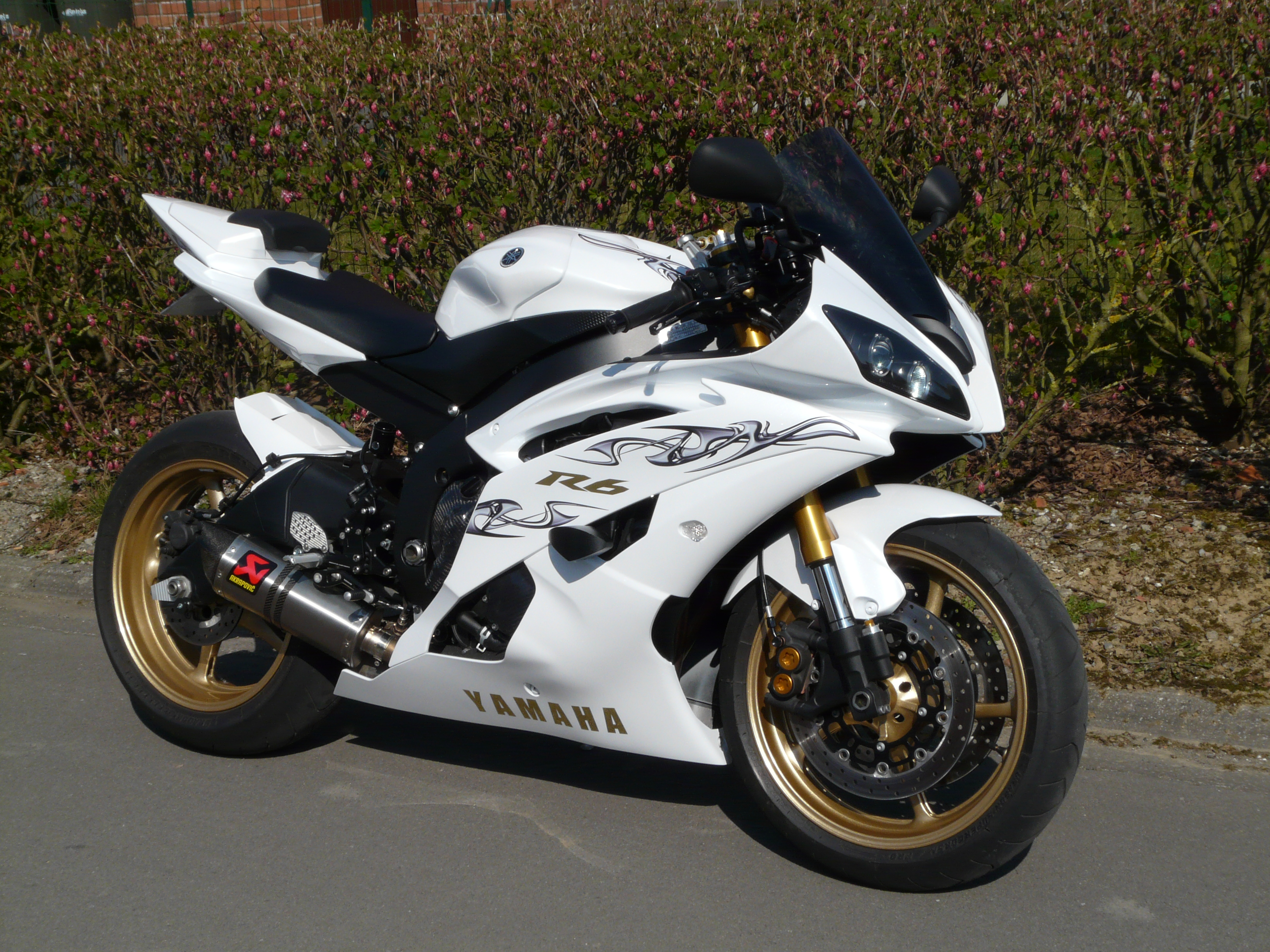 YAMAHA R6 white Yamaha R6 White And Black