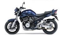 Suzuki Bandit #4
