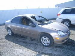 DODGE NEON brown