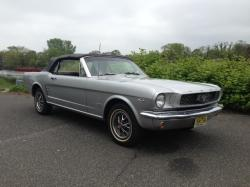FORD MUSTANG 289 silver