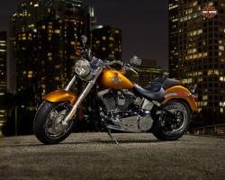 harley-davidson fat-boy