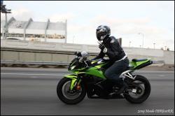 HONDA CBR 600 green