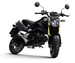 HONDA MONKEY brown