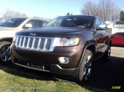 JEEP COMPASS 4X4 brown
