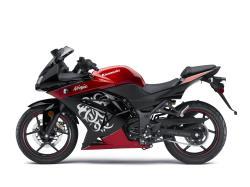 KAWASAKI NINJA 250R red