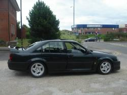 LOTUS CARLTON brown