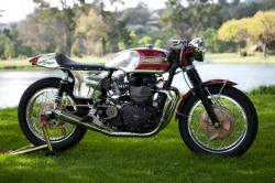 TRIUMPH SPRINT 900 brown