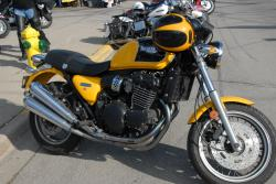 TRIUMPH THUNDERBIRD brown