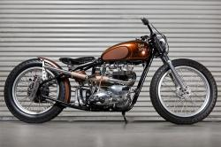 TRIUMPH TROPHY brown