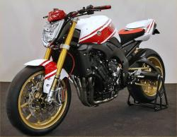YAMAHA FZ1 brown