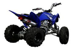 YAMAHA RAPTOR 250 blue